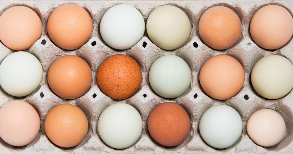 Egg Shell Colour
