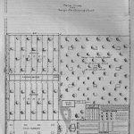 Practical Plan for a 10 Acre, 1,000 Hens Poultry Farm