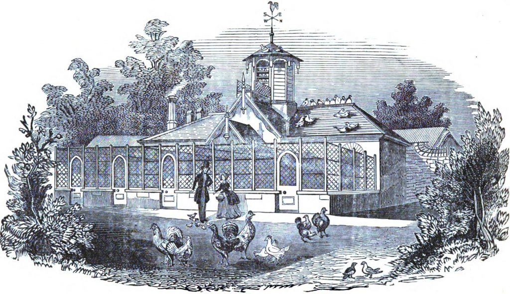 Queen Victoria's Poultry House from Nolan