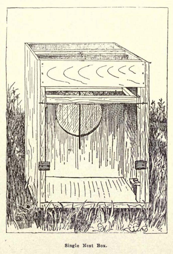 Single Trap Nest Box Diagram