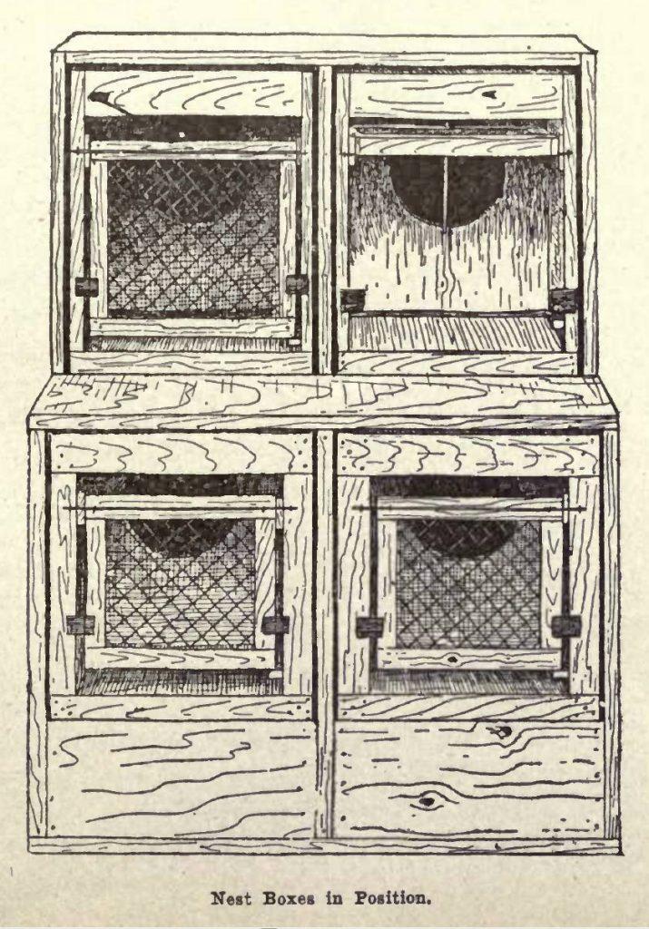 Trap Nest Boxes