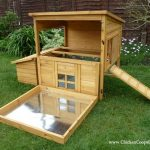 Poultry Housing - Chicken Coops Checklist