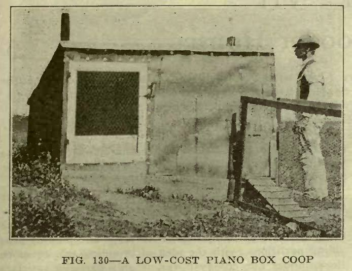 Low Cost Chicken Coop