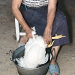 Plucking a Chicken - How to Pluck a Chicken