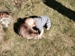 Arwen Cuddles
