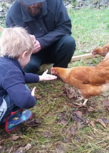Small childing hand feeding a nova brown hen
