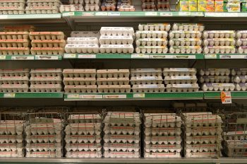 Stacked boxes of eggs