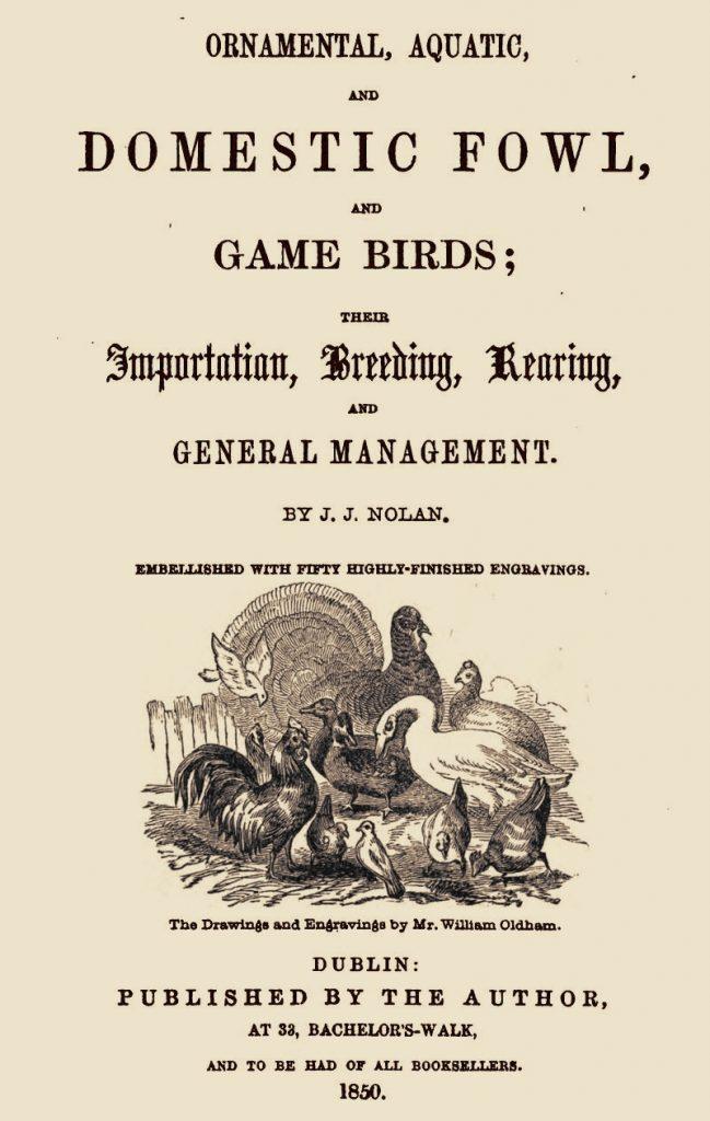 Ornamental Fowl
