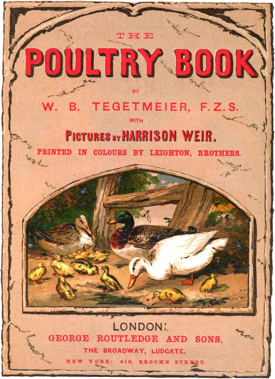 The Poultry Book 1867