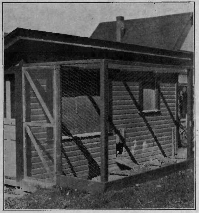 Back-Yard Poultry House
