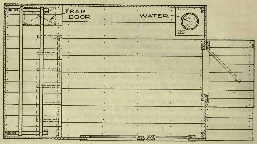 Fig43 Floor Plan Elevated Poultry House