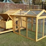 Versatile Traditional 6 Hen Chicken Coop - Devon Poultry House Review