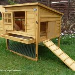 Raised Chicken Coop for 6 Hens – Dorset Poultry House Reviewed