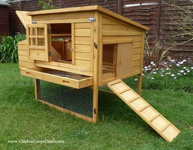 Dorset Raised Chicken Coop