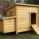 Bargain Chicken Coop 3 to 5 Hens | Kent Discount Poultry House Review
