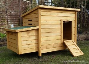 Kent Budget Chicken Coop - Buy Chicken Coops